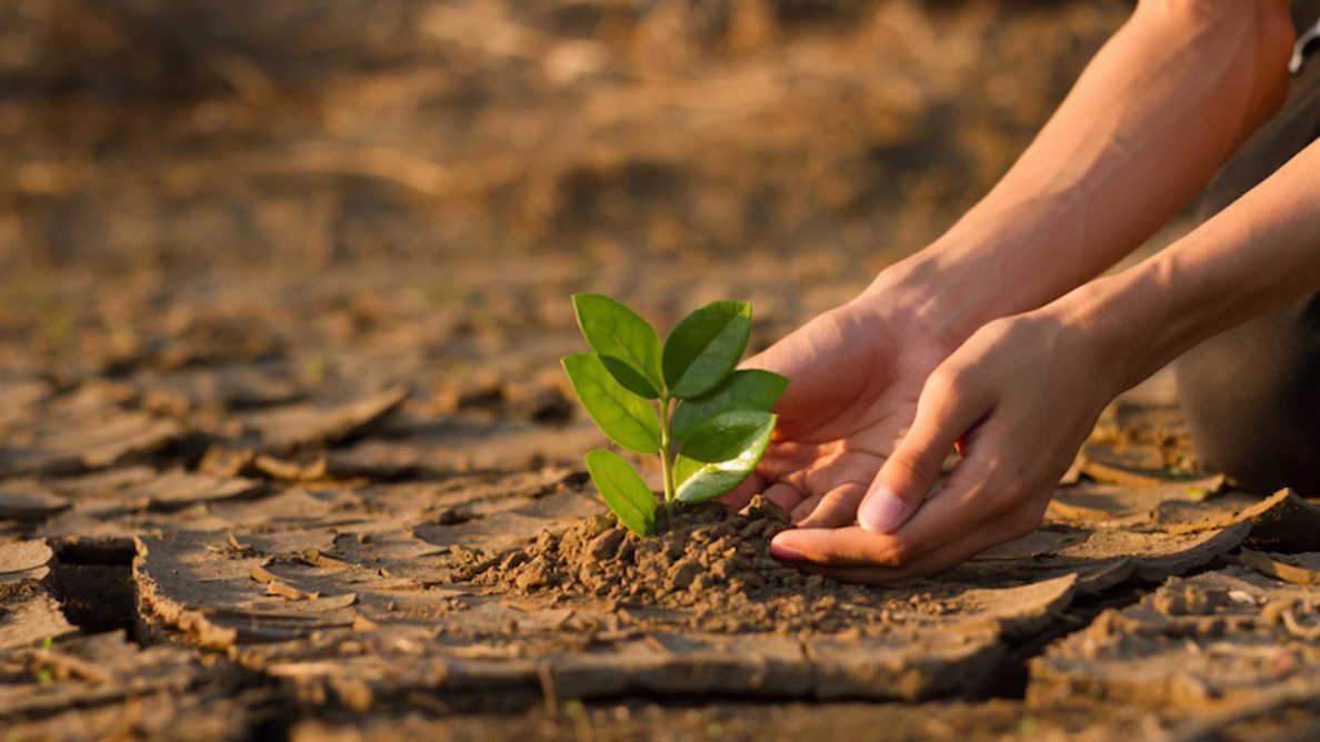 Utjecaj klimatskih promjena na ljudsko zdravlje